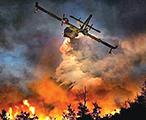 """The wildfire dubbed """"the Beast"""" recently wreaked havoc on northern Alberta."""